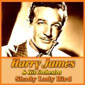 Shady Lady Bird von Harry James