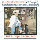 Soy el Hijo de Chalino by Adan