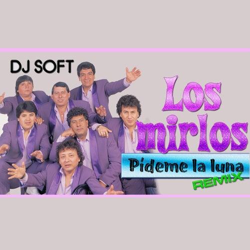 Pideme la Luna (Remix) by Los Mirlos