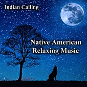 Native American Relaxing Music by Indian Calling