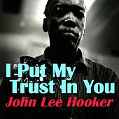 I Put My Trust In You von John Lee Hooker