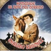 Homenaje al Jefe del Corrido by Chalino Sanchez
