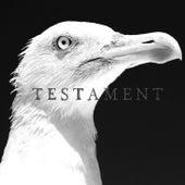 Testament by Nelia