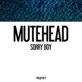Sorry Boy by Mutehead