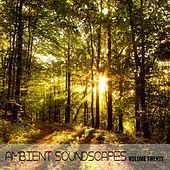 Ambient SoundScapes. Vol. 20 von Terry Oldfield
