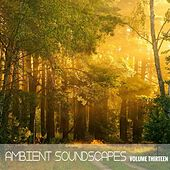 Ambient SoundScapes, Vol. 13 von Terry Oldfield