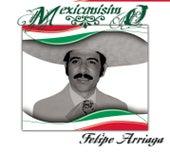 Mexicanísimo by Felipe Arriaga