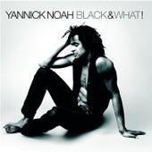 Black & What ! by Yannick Noah
