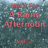 Music for a Rainy Afternoon Vol.2 by Various Artists