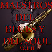 Maestros del Blues y del Soul Vol.II von Various Artists