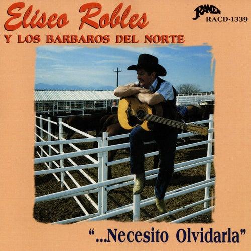 Necesito Olvidarla by Eliseo Robles