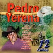 12 Exitos by Pedro Yerena