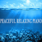 Peaceful Relaxing Piano von Various Artists