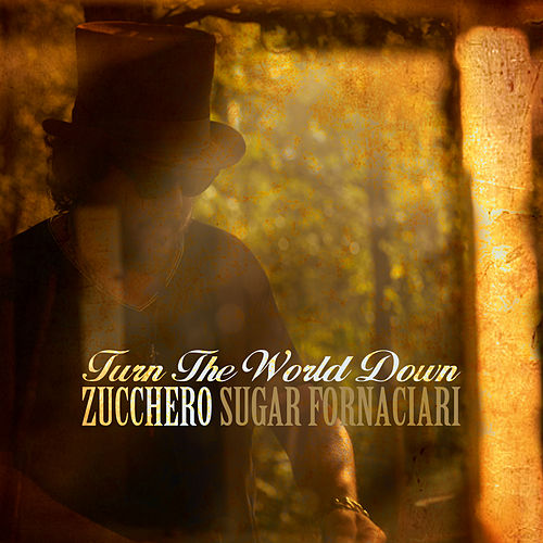 Turn the World Down by Zucchero