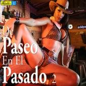 De Paseo en el Pasado 2 by Various Artists
