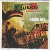 Mi Peligrosa Tijuana by Almalafa