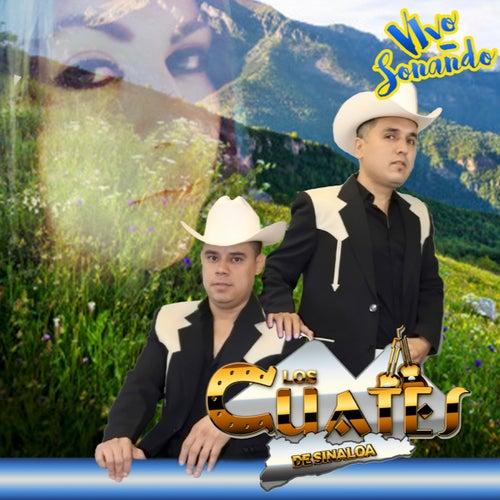 Vivo Sonando by Los Cuates De Sinaloa