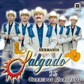 15 Corridos Norteños by Los Hermanos Salgado