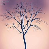 Hold On by Jhameel