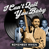 I Can't Quit You Baby - Remember When von Various Artists