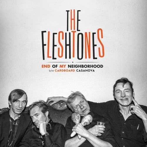 End Of My Neighborhood by The Fleshtones