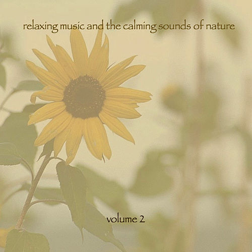 Relaxing Music & The Calming Sounds Of Nature - Volume 2 by Music For Meditation