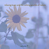 Relaxing Music & The Calming Sounds Of Nature - Volume 5 by Music For Meditation