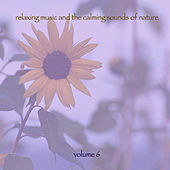 Relaxing Music & The Calming Sounds Of Nature - Volume 6 by Music For Meditation