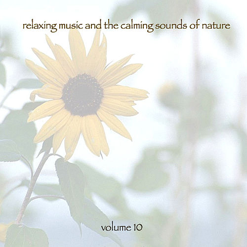 Relaxing Music & The Calming Sounds Of Nature - Volume 10 by Music For Meditation