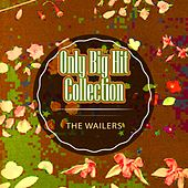Only Big Hit Collection de The Wailers