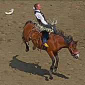 Rodeo of the Soul by Joe West