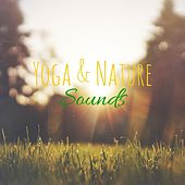 Yoga & Nature Sounds by Yoga Music