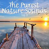 The Purest Nature Sounds - Top 8 by Various Artists