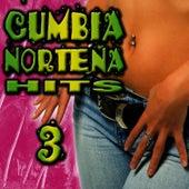 Cumbia Norteña Hits 3 by Cumbia Sabrosa