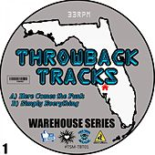 Throwback Tracks - Warehouse Series, Vol. 1 by Skynet