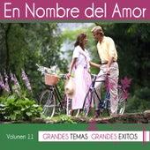 En Nombre del Amor Vol. 11 by Various Artists