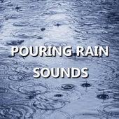 Pouring Rain Sounds by Rain Sounds (1)