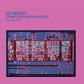 Computer Experiments, Vol. 1 by Synergy