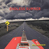 Endless Sumner by Will Sumner