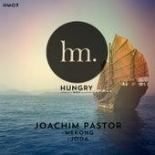 Mekong by Joachim Pastor