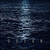 Ocean by Index Case