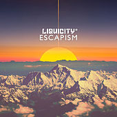 Escapism - (Liquicity Presents) by Various Artists