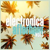 Electronica Afterhour, Vol. 1 by Various Artists