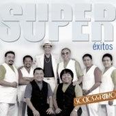 Super Éxitos by Los Socios Del Ritmo