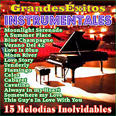 15 Grandes Éxitos Instrumentales by Various Artists