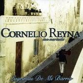 Lagrimas De Mi Barrio by Cornelio Reyna