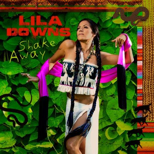 Shake Away by Lila Downs