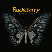 Black Butterfly by Buckcherry