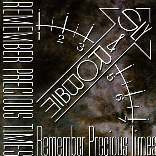 Remember Precious Times by Sly and Robbie