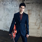 David Thibault by David Thibault
